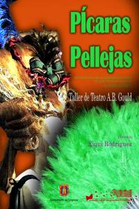 Cartel Pícaras Pellejas