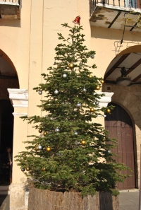 árbol decorado